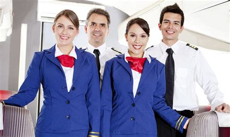 cabin crew diploma cabin crew diploma deal of the day groupon