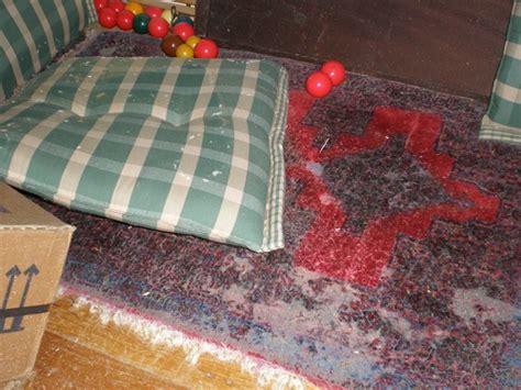 teppich knutzen kiel teppich knutzen kiel 13314120170925 blomap