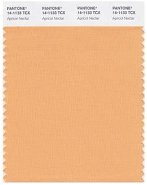 pantone pale peach pastels pinterest peaches 1000 images about color full on pinterest pantone
