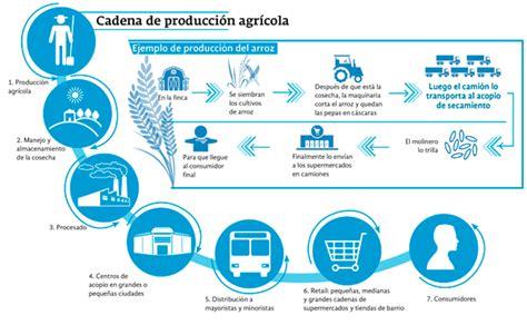 cadena productiva arroz 191 c 243 mo se afecta la cadena productiva por el paro camionero