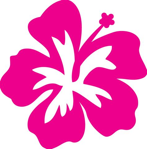 Hibiscus Outline Clipart Best Hawaiian Flower Template