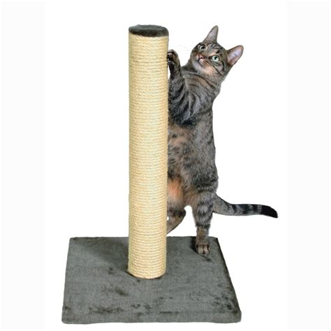 Cat Scratching by Cat Tree Scratching Post Uk Webnuggetz