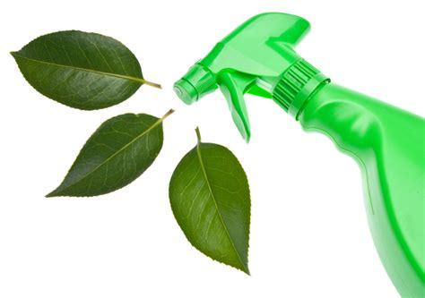 House Cleaning Eco House Cleaning Productos De Limpieza En Un Hogar Ecol 243 Gico Saludolog 237 A