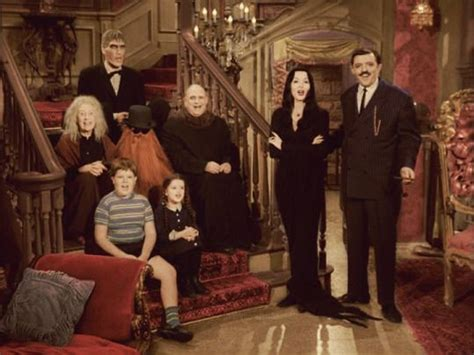 family set in color 340 best images about family vs the munsters on