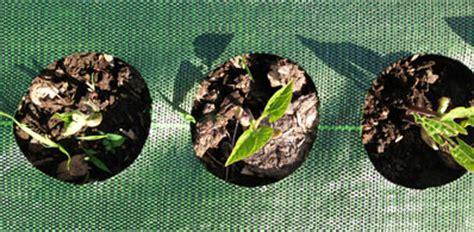 garden mats landscape fabric weed barrier  weed