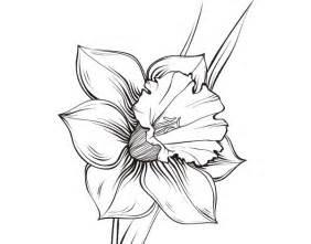 17 migliori idee su tatuaggio narciso su pinterest