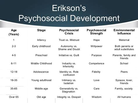 erik erikson research paper erikson s theory stages of development essay essay for you