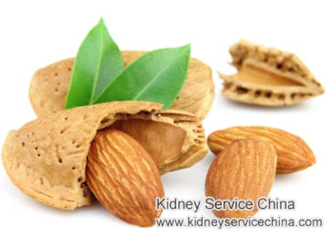 creatine bad for kidneys can patients with high creatinine level eat almonds