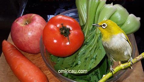 video membuat jus sayur membuat jus buah dan sayuran yang bermanfaat untuk pleci