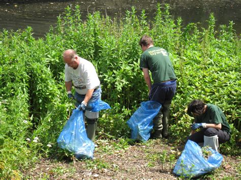 natural boat cleaner 3 rivers clean up nature conservation lewisham page 2