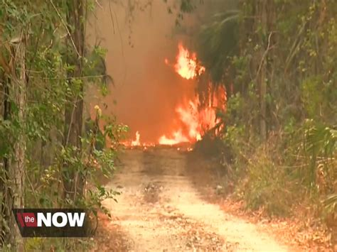 florida wildfires firefighters across florida battle drought fueled