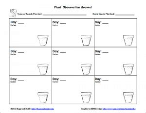gardening with planting seeds with free printable