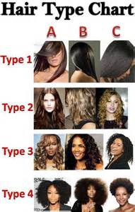 different types of hair color for americans ekari mbvundula on twitter quot all the hair types on the
