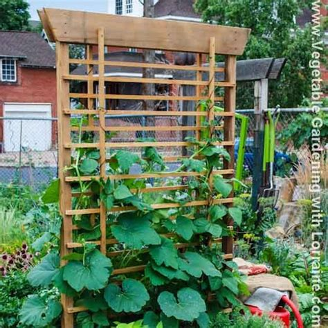 Vegetable Garden Trellis Ideas 102 Best Images About Trellises On Gardens Tomato Cages And Raised Beds