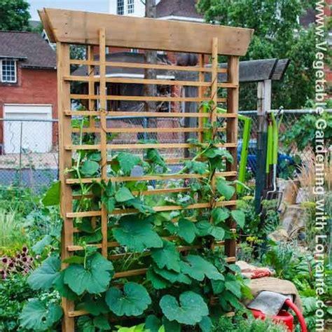 Vegetable Garden Trellis Ideas 102 Best Images About Trellises On Gardens