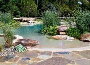 natural swimming pool natural pools are making a ripple but are they for you