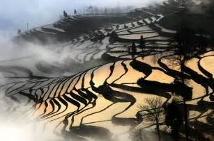 Century Home Design Inc peter leung rice terrace yuanyang yunnan province