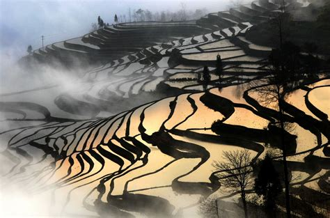 What Is French Country Design - peter leung rice terrace yuanyang yunnan province china at 1stdibs