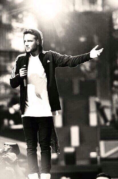 bio liam payne twitter 182 best images about liam james payne on pinterest i