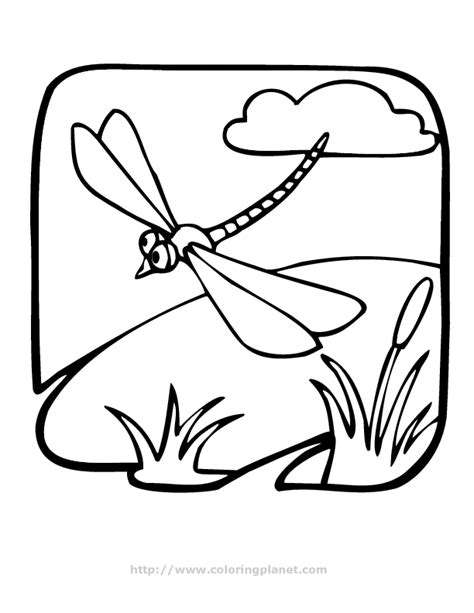 dragonflies coloring pages dragonfly coloring pages coloring home