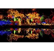 Christmas Scenery Pictures  Wallpapers9