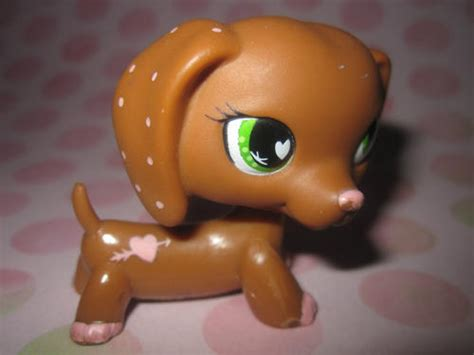 lps wiener dogs 1000 images about my lps on cocker spaniel toys and dachshund puppies