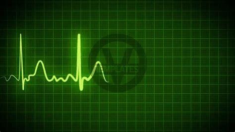 hospital background checks background green 1 187 background check all