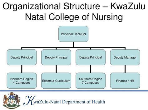 organization pattern of college of nursing ppt kwazulu natal college of nursing powerpoint