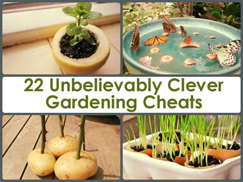 Garden Tips And Ideas 22 Unbelievably Clever Gardening Cheats
