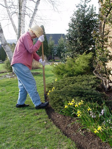 landscape bed edger nurturing the gardening gene garden housecalls