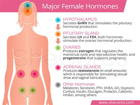 hormones and pregnancy mood swings pregnancy hormones and mood swings pregnancy mood swings