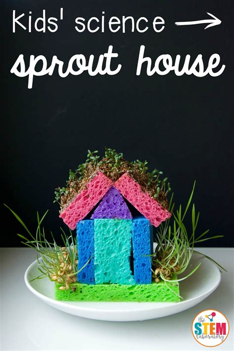 Sprout House by Sprout House The Stem Laboratory