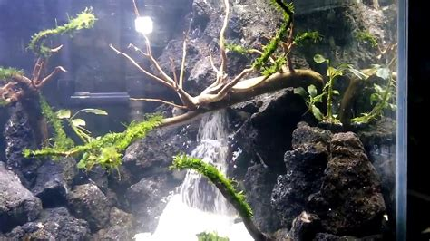 waterfall aquascape aquascape double waterfall from indonesia created by