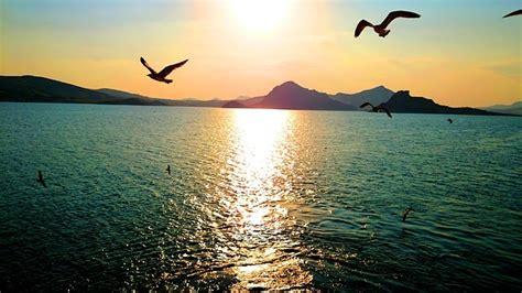 imagenes de paisajes sin copyright imagenes sin copyright un mar calmado frente a una bella
