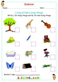 Living And Nonliving Things Worksheets Pdf by Science Living Non Living Things