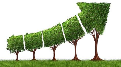 Nyu Mba Competitive by At Nyu Sustainability Competitive Advantage