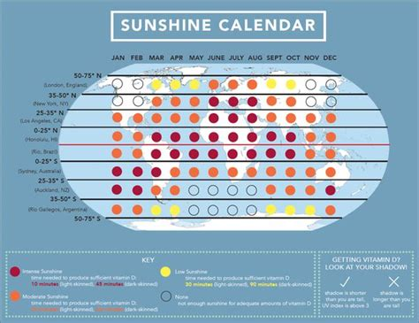 light box for vitamin d deficiency 16 best minerals and vitamins images on