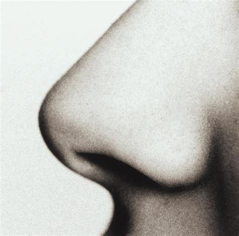 Plastik Naso chirurgia estetica naso rinoplastica