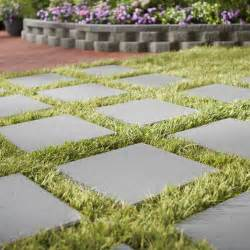 grass alternatives for backyards lawn alternatives