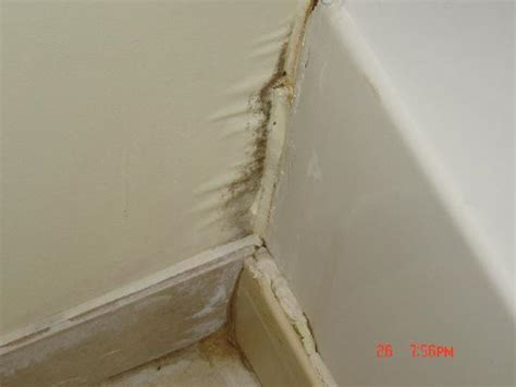 bathroom mildew bathroom mold picture of days inn gadsden gadsden
