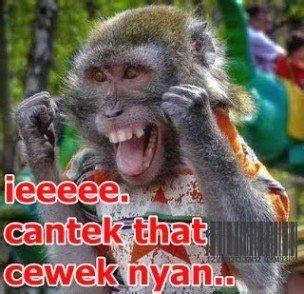 kumpulan foto coment facebook lucu bahasa aceh rakan