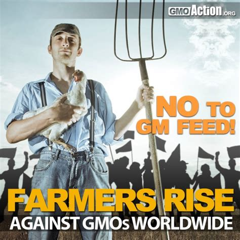 monsanto supreme court us farmers in supreme court appeal monsanto s