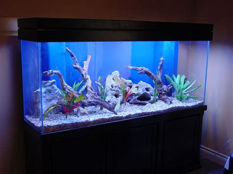 aquarium home decor fish tank ornaments ebay fish tank decoration ideas my