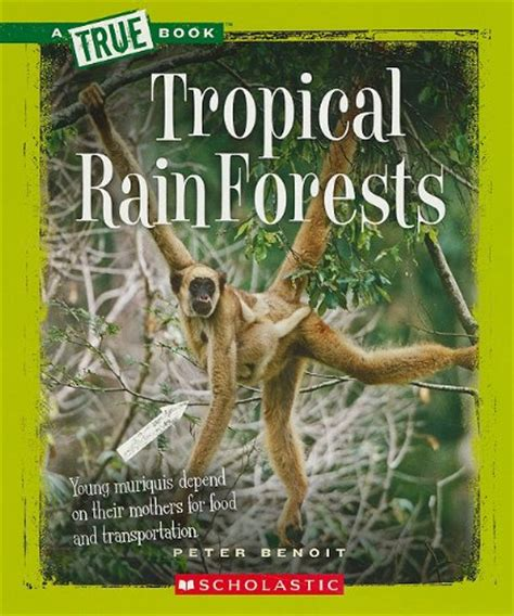 green mansions a of the tropical forest books the best rainforest children books living