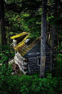 tiny camouflage log cabin in the woods tiny house pins