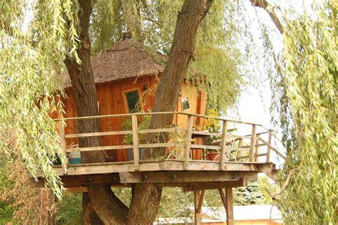 plattform am haus treelounge leben im baum baumhaus bauen treelounge