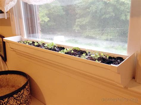 window sill planter indoor windowsill garden domesticity simple chic domestic life