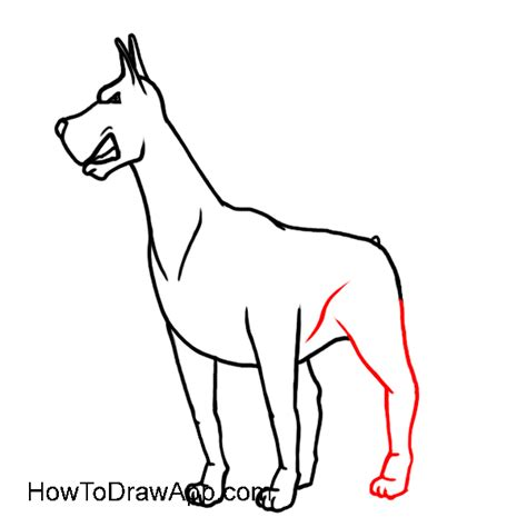 how to doberman how to draw a doberman pinscher easy drawing lesons for beginners