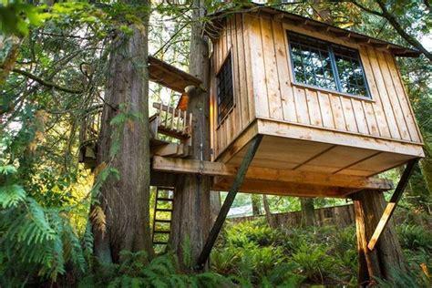 Costruire la casa sull' albero Casette per giardino