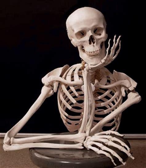 imagenes de calaveras esperando una llamada image gallery esqueleto esperando